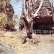 Cave Shelters, Bhimbetka